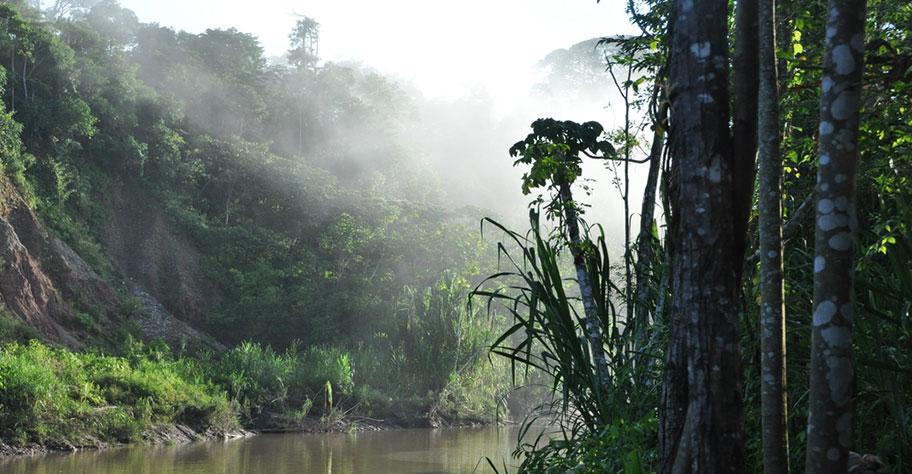 Amazonas Naturreisen Reisebüro Südamerika Schweiz