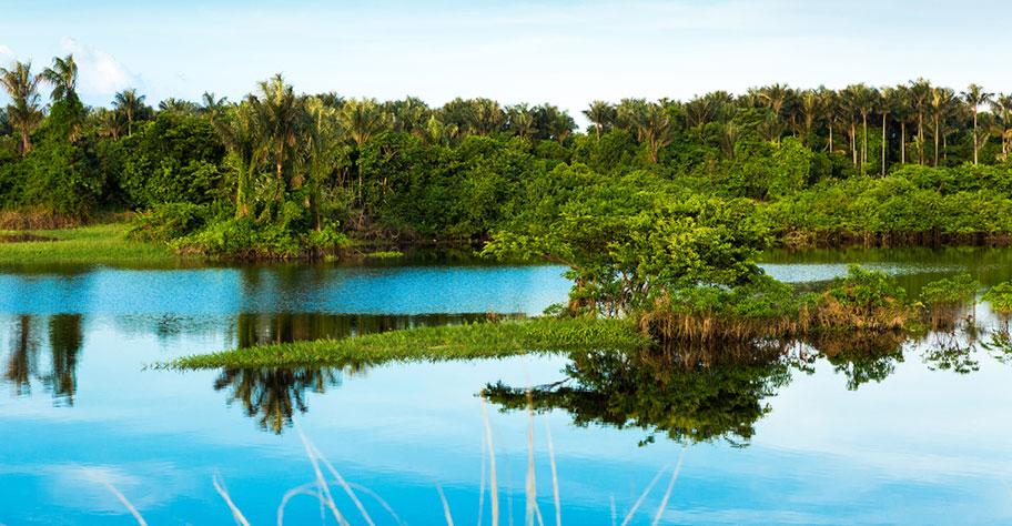 Amazonas Rundreise Brasilien preiswerte Angebote