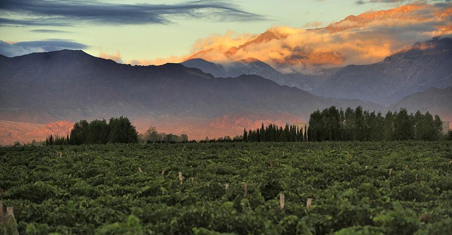 Argentinien Weinreisen günstig buchen