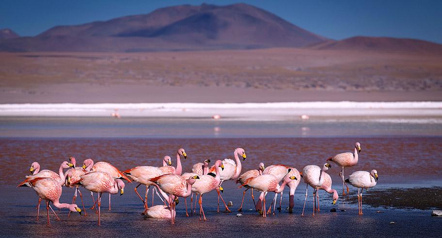bolivien-reisentipps-laguna-Ruta-de-las-Joyas