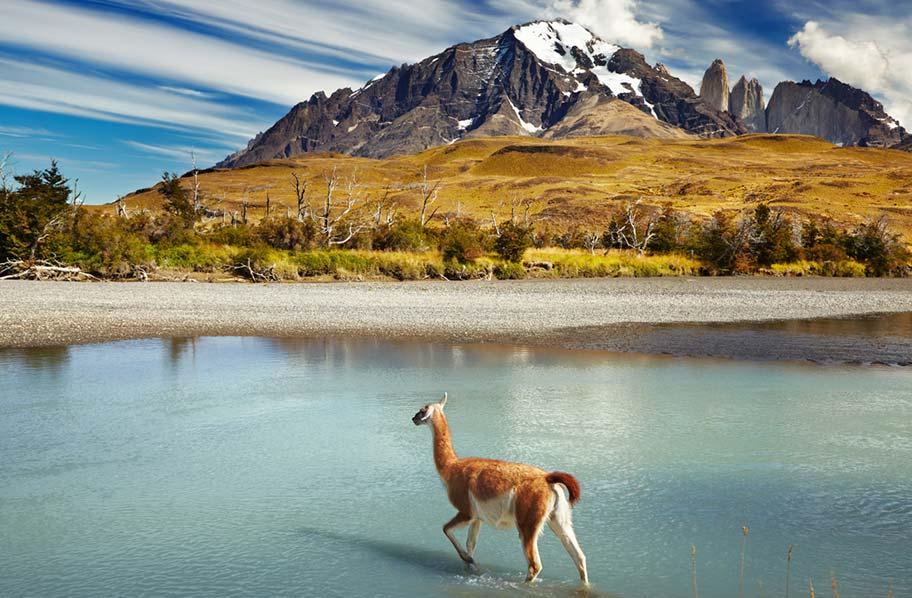 Chile Natur Reisen Patagonien Reisetipps Schweizer Reisebüro