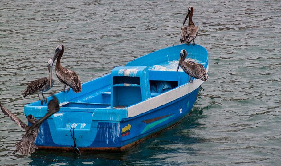 Ecuador Naturreisen Angebote Schweizer Anbieter Spezialist