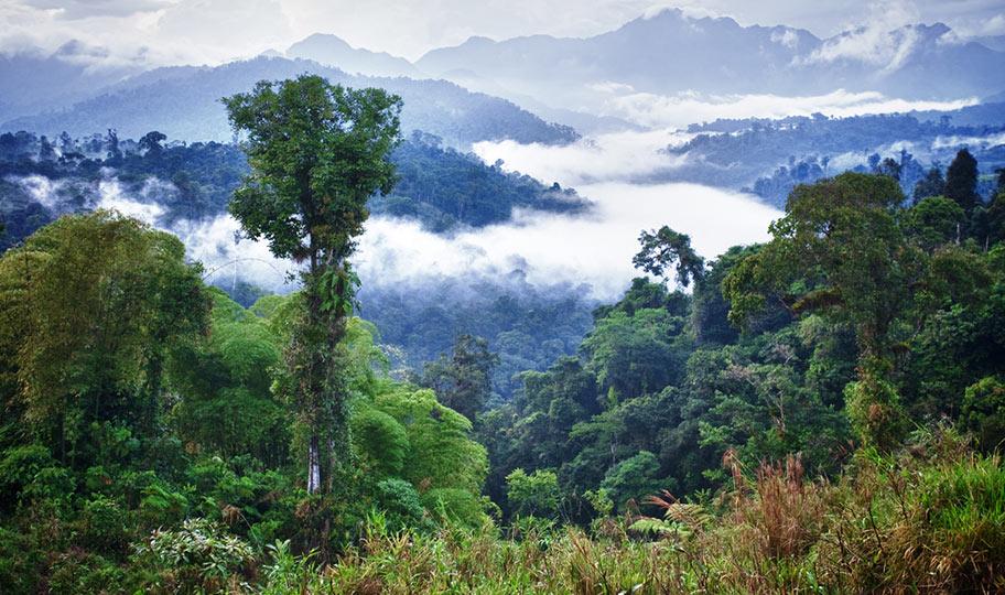 Ecuador Natur Reisen Schweiz Angebote