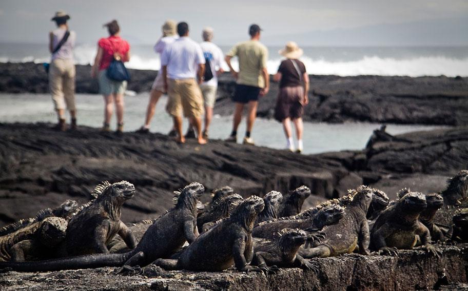 Galapagos Rundreisen buchen Angebote günstig