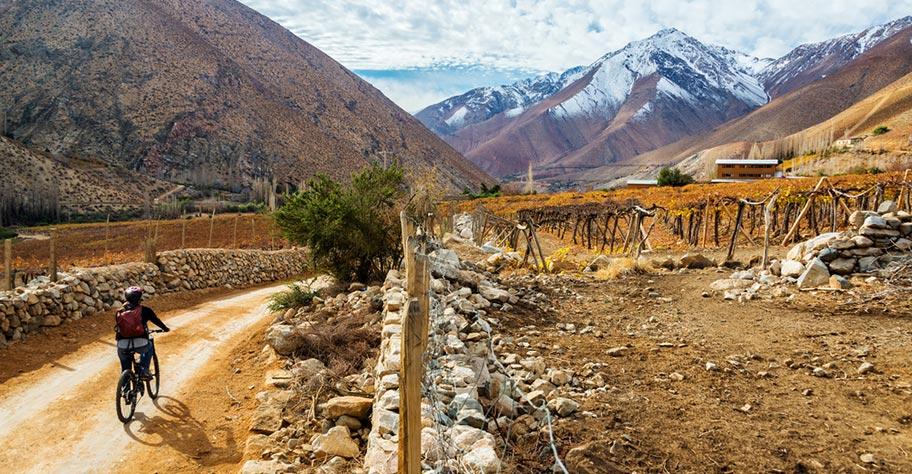 Chile Weinreisen Schweiz buchen