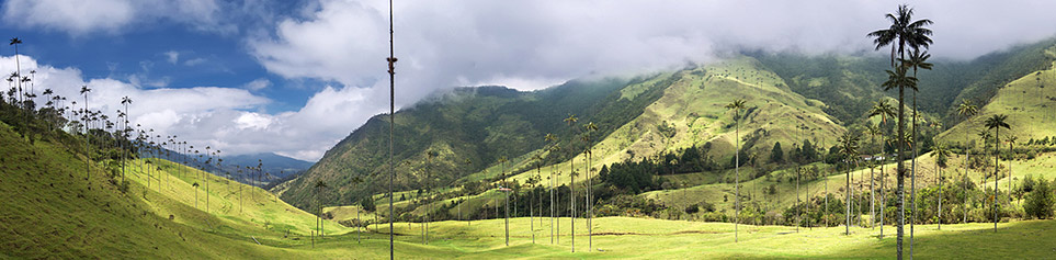 Kolumbien Kaffeeplantagen