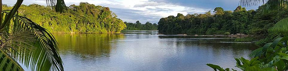 Reisetipps Suriname, Guyana und Französisch-Guyana